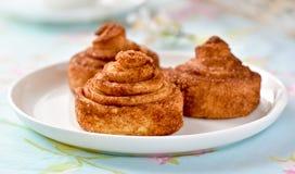 De eigengemaakte cakes van kaneelbroodjes Royalty-vrije Stock Fotografie