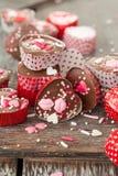 De eigengemaakte chocolade met bestrooit royalty-vrije stock fotografie