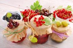 De eigengemaakte domeinen van het de zomerfruit Royalty-vrije Stock Afbeeldingen