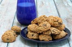 De eigengemaakte koekjes van het Rozijnenhavermeel Stock Afbeeldingen