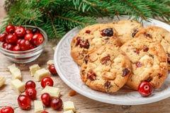 De eigengemaakte koekjes van de Kerstmisamerikaanse veenbes Stock Foto's