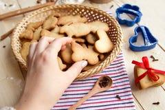 De eigengemaakte koekjes van Pasen stock afbeeldingen