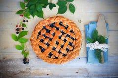 De eigengemaakte pastei van het braambessenrooster op gestippelde plaat Stock Fotografie