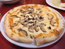De eigengemaakte pizza van de paddestoeltruffel met kaas stock foto's