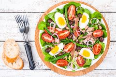De eigengemaakte salade nicoise met tonijn, ansjovissen, tomaten Royalty-vrije Stock Foto's