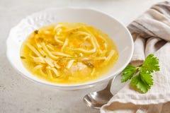 De eigengemaakte soep van de kippennoedel in een witte plaat, witte achtergrond royalty-vrije stock afbeeldingen