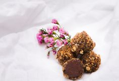 De eigengemaakte Truffels van de Chocolade Met de hand gemaakte Snoepjes Stock Afbeeldingen