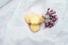 De eigengemaakte Truffels van de Chocolade Met de hand gemaakte Snoepjes Royalty-vrije Stock Foto