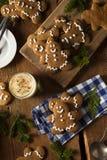 De eigengemaakte Verfraaide Koekjes van Peperkoekmensen stock foto's