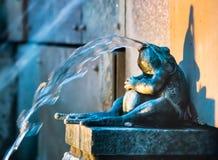 De Eigenschap van het het Standbeeldwater van de messingsBrulkikvors Stock Foto's