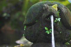 De eigenschap van het water Stock Foto's