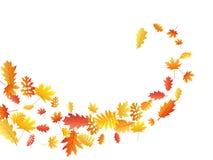 De eik, esdoorn, wilde aslijsterbes verlaat vector, de herfstgebladerte op witte achtergrond stock afbeeldingen