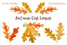 De eiken geplaatste bladeren van de waterverfherfst 1 grens en 3 samenstellingen stock illustratie