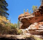 De Eiken Kreek van de Vork van het westen. Stock Afbeelding