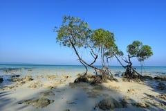 De Eilanden van Andaman India stock afbeelding