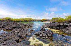 De eilanden van de Galapagos Royalty-vrije Stock Foto's