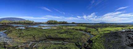 De eilanden van de Galapagos van Fernandinalandschappen stock afbeelding