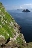 De Eilanden van Skellig - de Mening van het Oog van de Papegaaiduiker Stock Foto