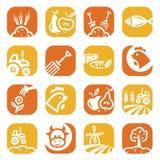 De landbouw en de landbouwpictogrammen van de kleur Stock Afbeeldingen