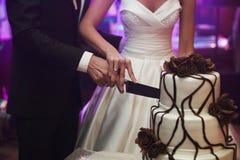 De elegante vrij jonge bruid en de bruidegom snijden de cake Stock Afbeeldingen