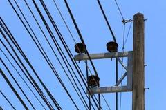 De elektriciteitspolen in de stad hebben ter plaatse lange kabels met transmissie Om naar huis te verzenden stock afbeeldingen