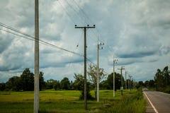 De elektriciteitspolen worden gevestigd op het elektrische veld Stock Foto