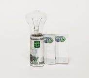 De elektrische lampbollen en de bankbiljetten bevinden zich rechtop op een grijze achtergrond Stock Fotografie