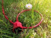 De elektrokabel met een contactdoos vormt een ring rond bloem Stock Afbeeldingen