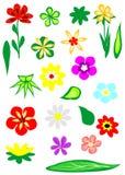 De elementen van de bloem Royalty-vrije Stock Foto's