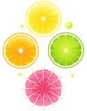 De elementen van de cocktail voor ontwerp Stock Illustratie