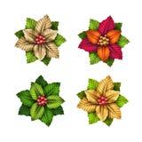 De elementen van de Kerstmisdecoratie, geïsoleerde poinsettiabloemen Royalty-vrije Stock Foto