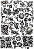 De elementen van het bloemen en vogelornament Royalty-vrije Stock Fotografie