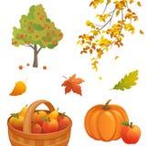 De elementen van het de herfstontwerp Stock Afbeelding