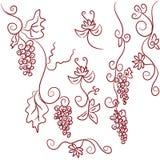 De elementen van het ontwerp van druiven stock illustratie