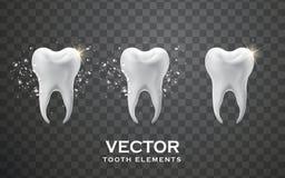 De elementen van het tandontwerp Stock Foto's
