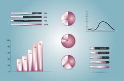 De elementen van Infographics Stock Afbeelding