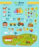 De Elementen Vector Vlak Ontwerp van Infographic van het Ecolandbouwbedrijf stock illustratie