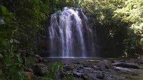 De Ellinjaadalingen in de zomer in Queensland, Australië, schuine stand bewegen zich omhoog stock videobeelden