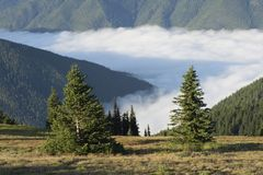 De Elwha-Vallei en Bailey Range, Olympisch Nationaal Park, Washington stock foto's