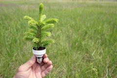 De energieconcept van Eco stock fotografie
