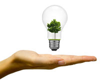 De energieconcept van Eco Stock Foto's