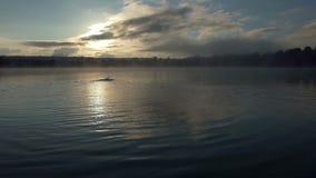 De energieke mens zwemt kruipt in een aardig meer bij zonsondergang in slo-mo stock footage