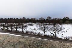 22 de enero de 2017: Panorama del cementerio de Skogskyrkogarden en Sto Imágenes de archivo libres de regalías