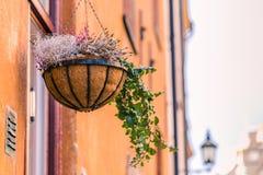 21 de enero de 2017: Un florero en un balcón en la ciudad vieja de Sto Fotografía de archivo