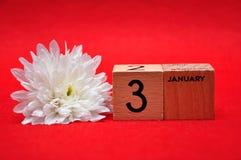 3 de enero en bloques de madera con una margarita blanca fotos de archivo libres de regalías