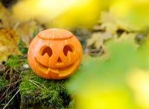 De enge pompoen van Halloween in de herfstbos Royalty-vrije Stock Afbeeldingen