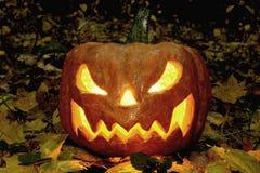 De enge pompoen van Halloween in het nachtbos Stock Afbeelding