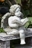 De engel van de lezing Royalty-vrije Stock Fotografie