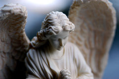 De engel van de vissoep Stock Afbeeldingen