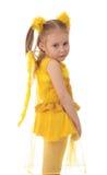De engel van het meisje. stock afbeeldingen